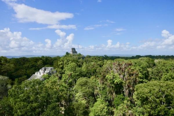 Tikal - 23
