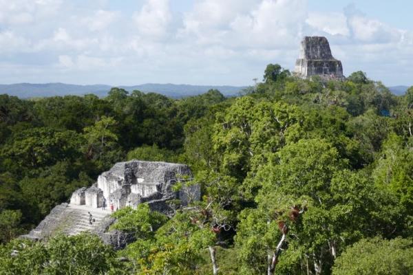 Tikal - 25