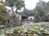 shanghai_25-10-12_022