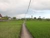 image20120329060