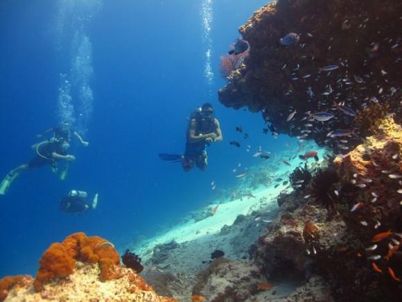 Korallenriffe bei Gili Trawangan